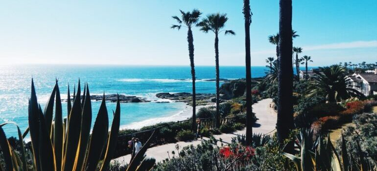California shoreline
