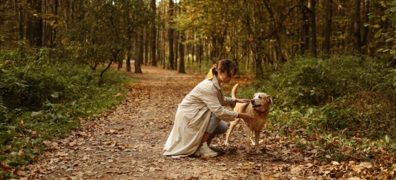 A woman in a park with a dog.